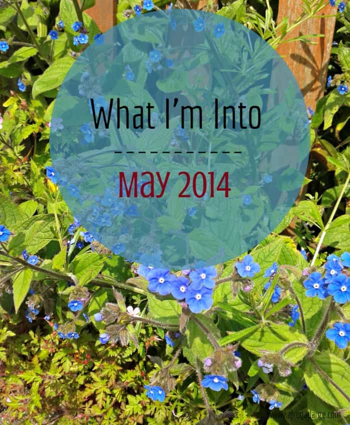 What I'm Into – May 2014 Edition
